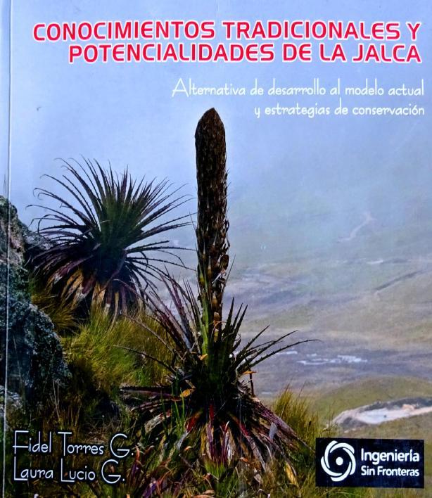 Jalca Cajamarquina.jpg